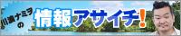 川浪ナミヲの情報アサイチ!