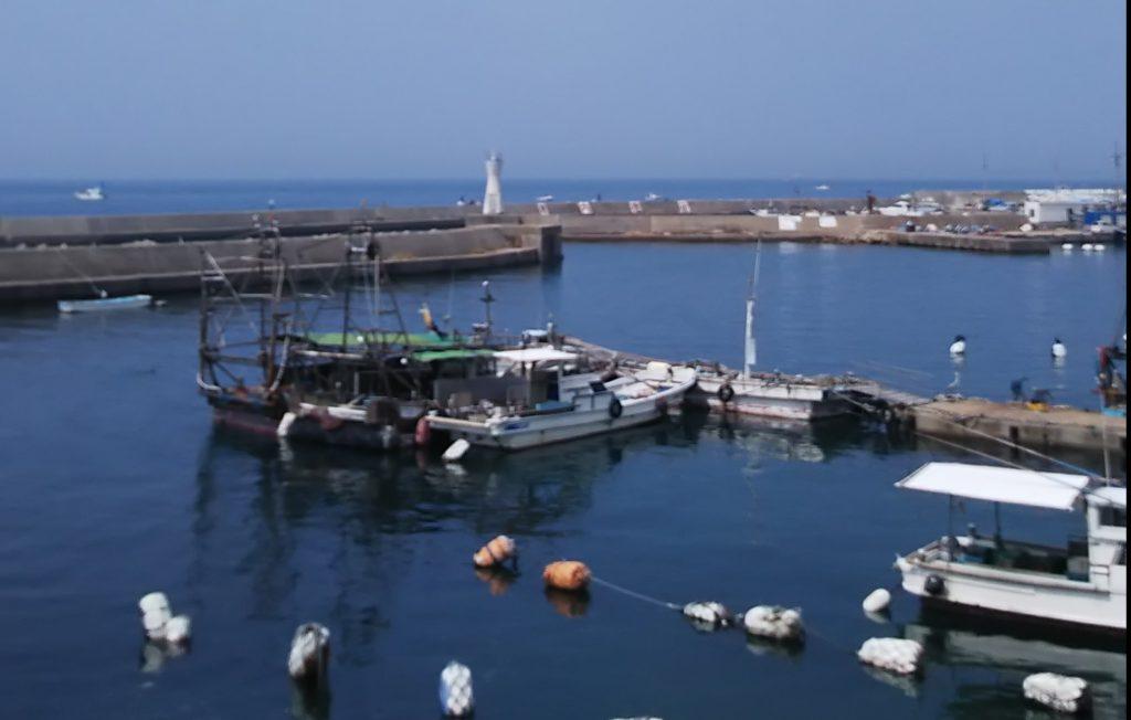 明石浦漁港では初日(2月29日)の水揚げが450キロ
