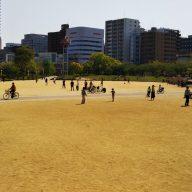 公園のにぎわい