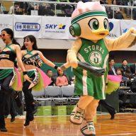 ストーキー(Photo by T.MAEDA)